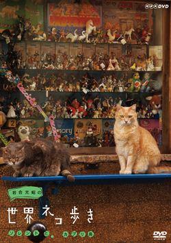 岩合光昭の世界ネコ歩き世界 ソレントとカプリ島