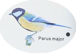 野鳥シンギング電波時計